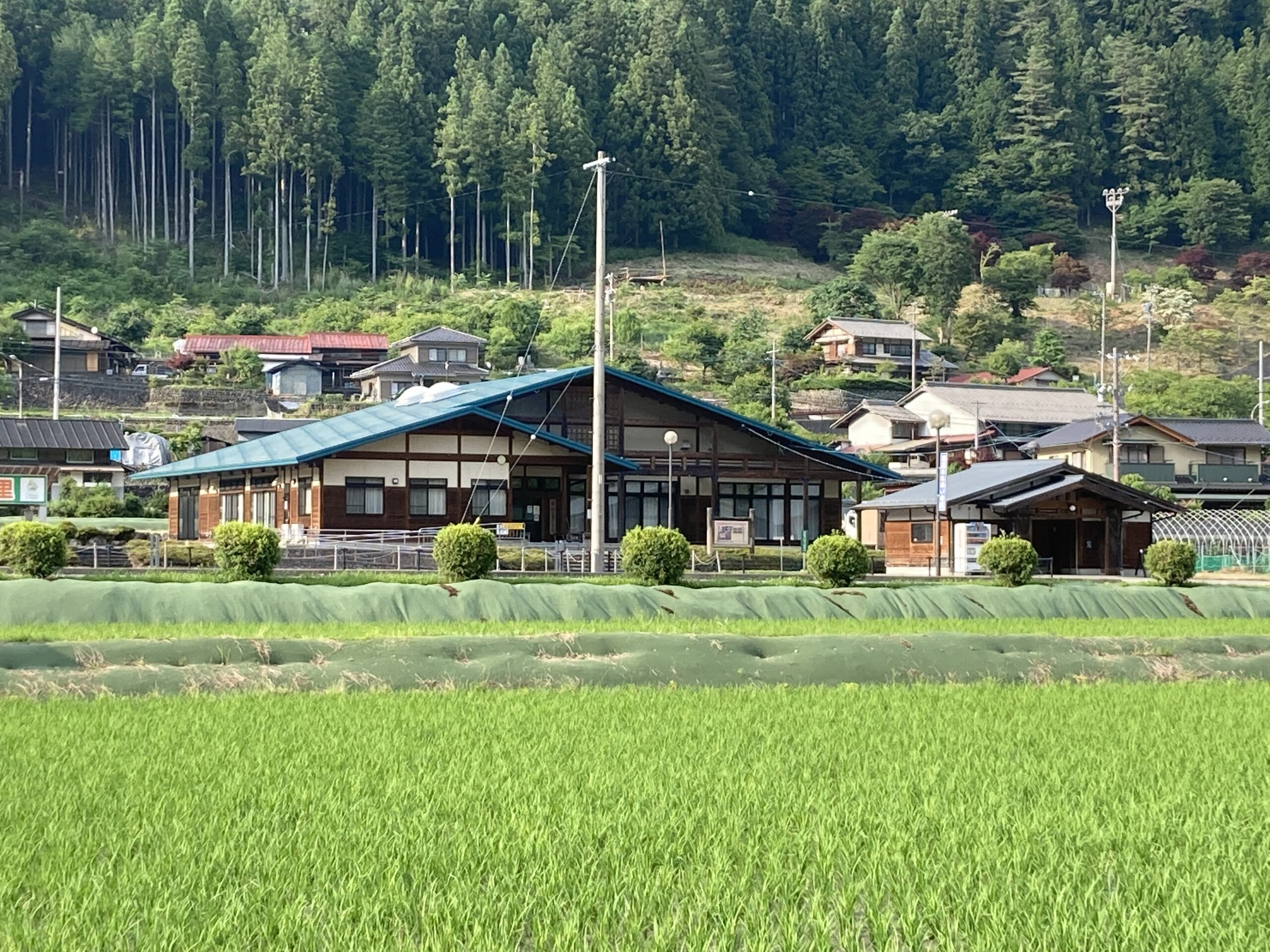 Read more about the article 2021年ぎふ清流馬瀬川アユ釣り大会参加申込終了