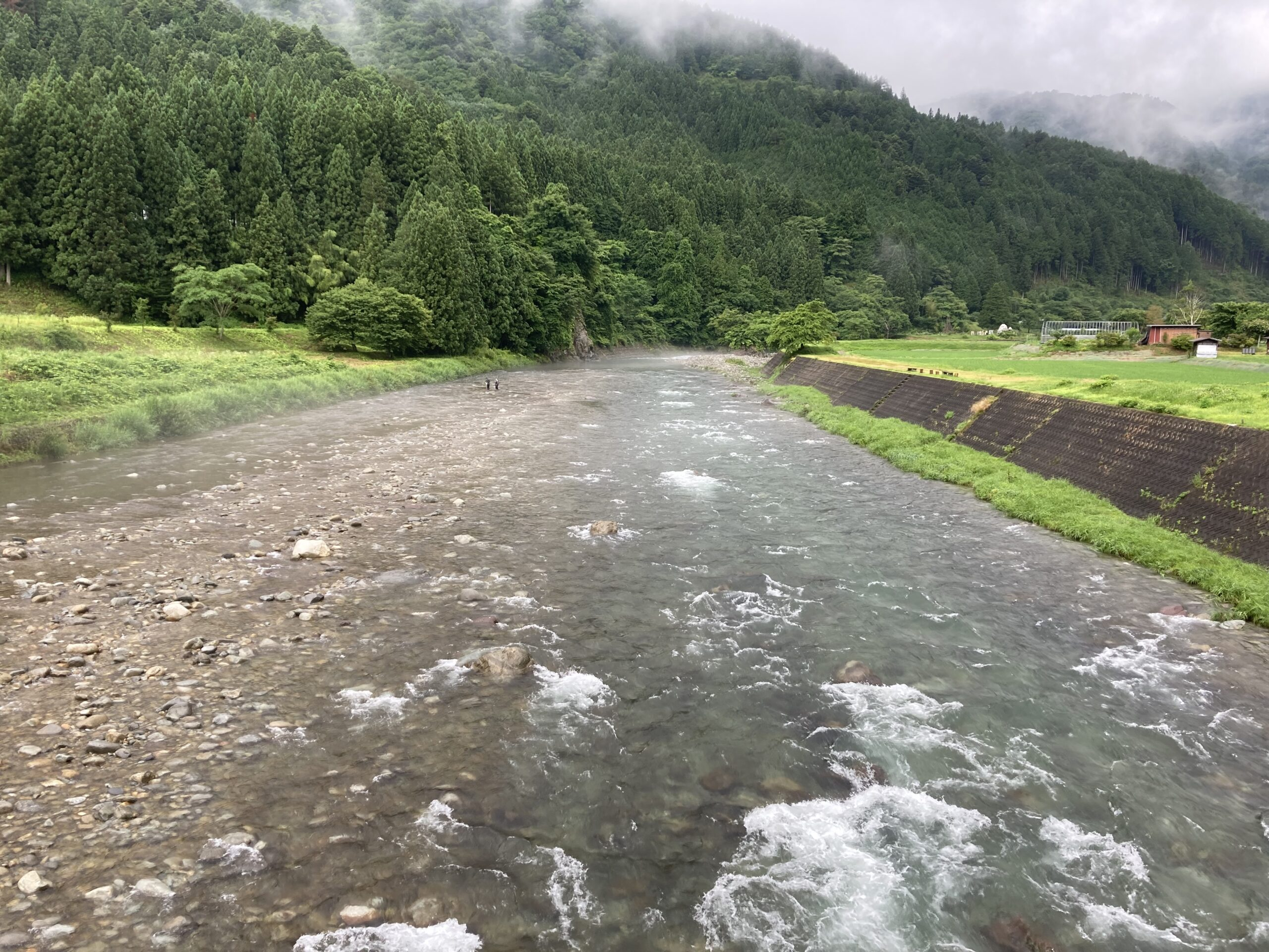 You are currently viewing 高水になるも河川状態は良好
